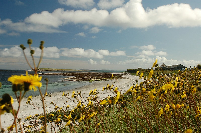 East shore, Papa Westray