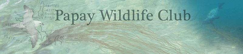 Papay Wildlife Club Holidays